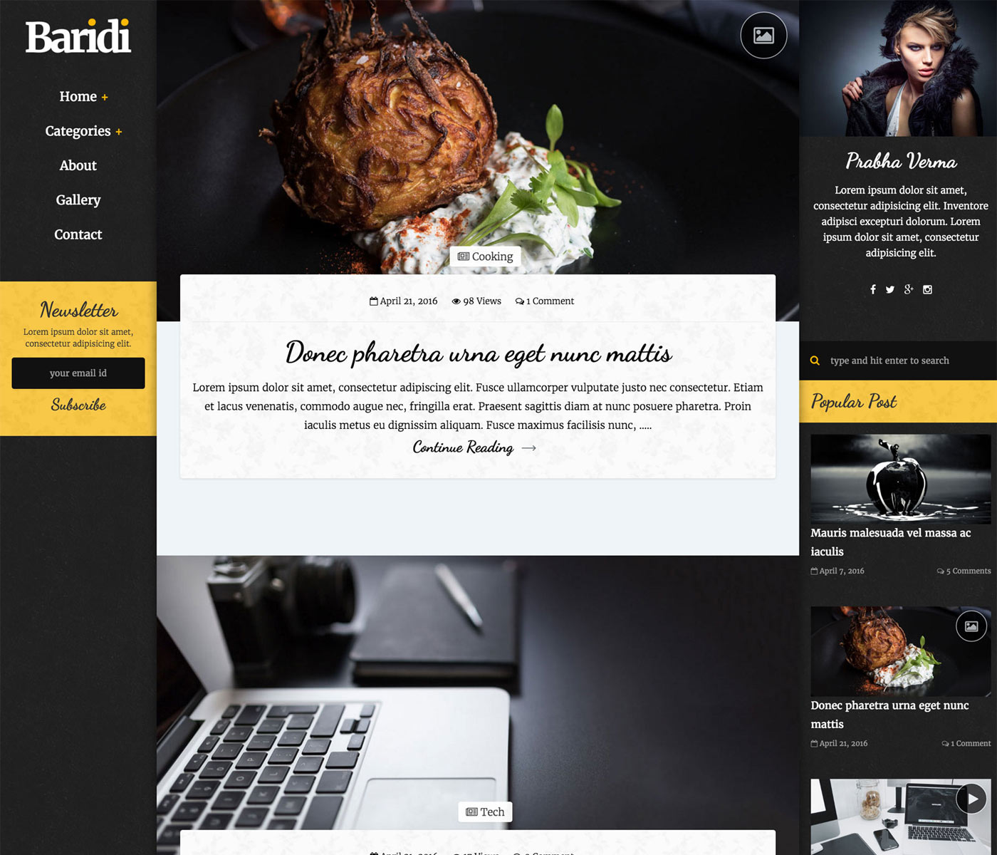 Baridi – Personal and Multi Author Blog Template